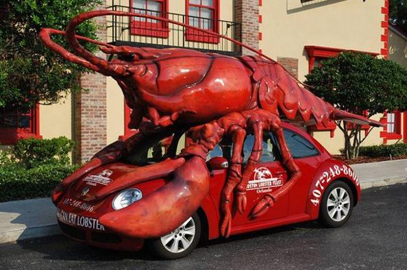 www.hammarica.com/pr Lobster