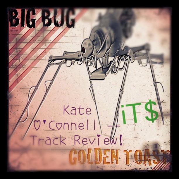 Big Bug track review
